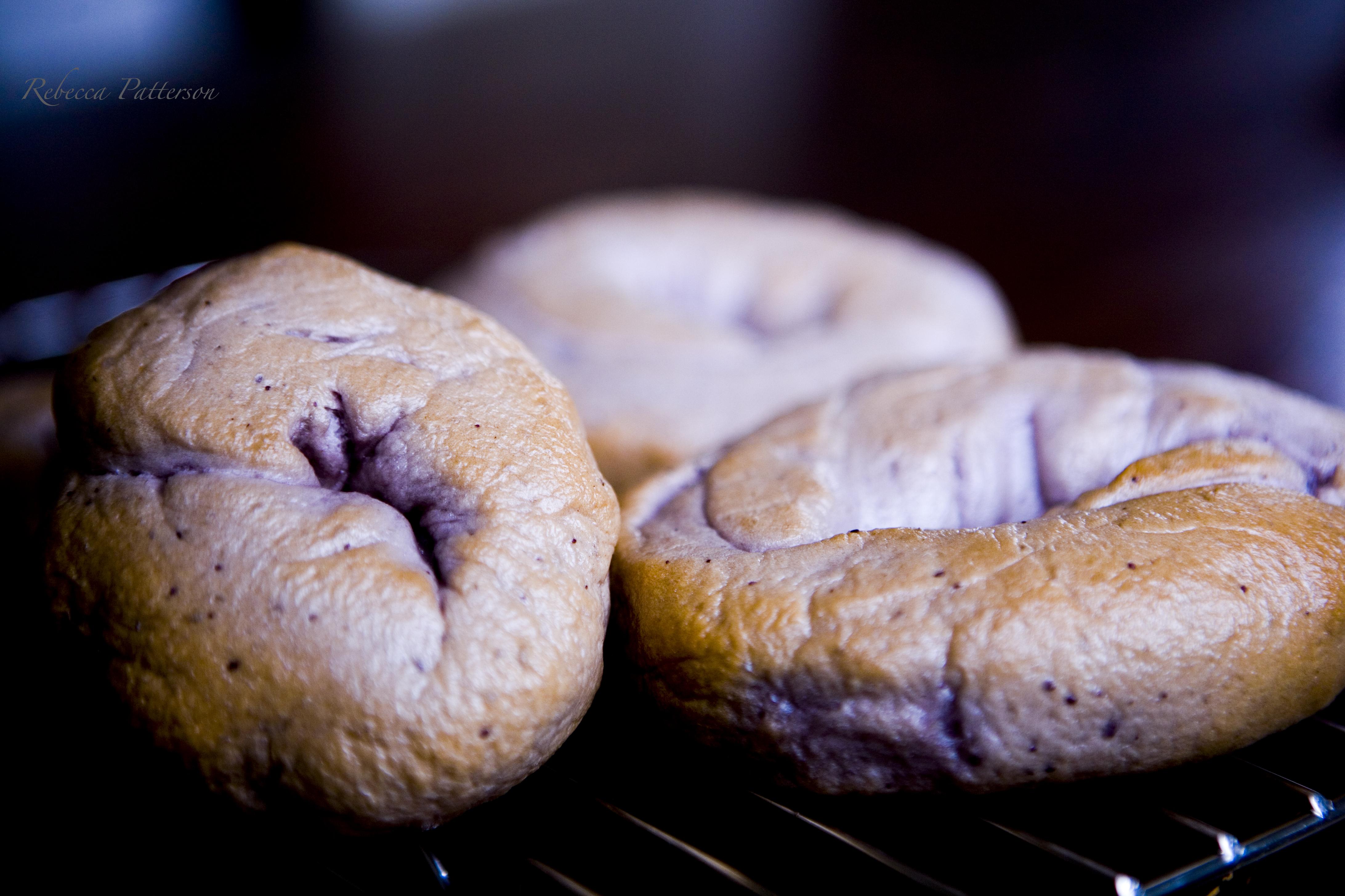 blueberry bagels lighter faster focused